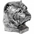 Statue tête de chien bouledogue Anglais en résine argentée - 30 cm