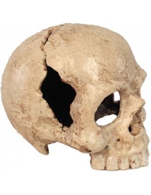 Statue tête de mort blanche en fonte  - 13 cm