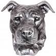 Statue argent tête de chien en résine pitbull staff américain oreille naturel - 35 cm