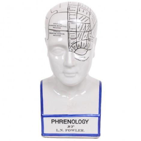 Statue buste et tête de phrénologie en faïence de L. N. Fowler. 40 cm